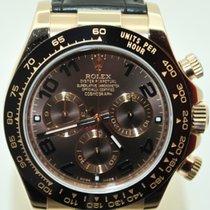 Rolex Daytona Cosmograph Everose Chocolate Dial