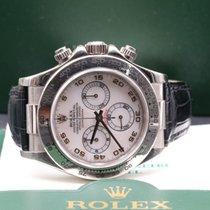 勞力士 (Rolex) Daytona 116519 MADREPERLA ROSA FULL SET