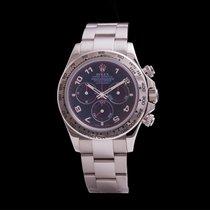 Rolex Daytona Ref. 116509 (RO3855)
