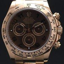 勞力士 (Rolex) Daytona 116505 chocolate with card