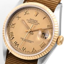 Rolex 18K/SS 36mm Datejust Champ Roman Ale NATO 16013 model