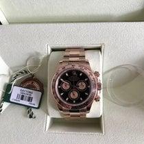 Rolex DAYTONA OR ROSE