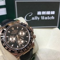 Rolex Cally - Daytona 116515LN Chocolate Black Dial (皮帶) 黑面 [NEW]