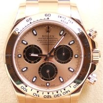 Rolex Daytona, Ref. 116505 - rosa Zifferblatt