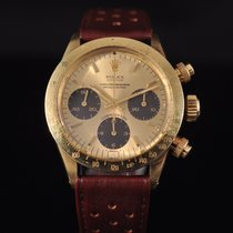 롤렉스 (Rolex) Daytona Gold Floating Tropical Registers