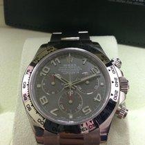 勞力士 (Rolex) 116509 Daytona White Gold Grey Dial 40mm (NEW)