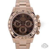 Rolex Daytona Rose Gold | Chocolate Brown Dial | 2016 116505