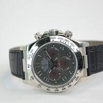 Rolex Daytona 18kt White Gold with Black Crocodile Strap - 116519