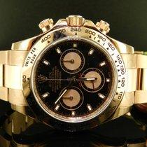 Rolex Daytona Cosmograph Ref. 116505 Oro Rosa Aph