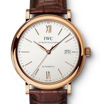 IWC IW356504