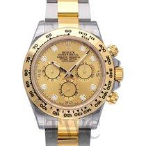ロレックス (Rolex) Daytona Champagne/18k gold G 40mm - 116503
