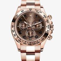 Rolex Daytona Oro Rosa Quadrante Chocolate - 116505