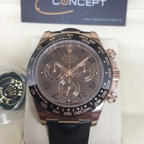 勞力士 (Rolex) Rolex 116515LN Rose Gold Daytona Chocolate Ceramic...