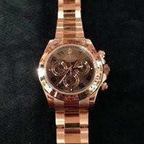 Rolex Daytona Ref. 116505 - Braun Arabisch / Oysterband