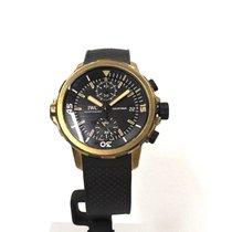 IWC Aquatimer Cronograph Darwin