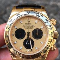 Rolex Daytona  Oro Gold full set