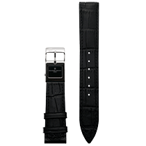 Frederique Constant E-Strap Black Stainless Steel 22mm