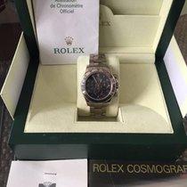 Rolex Roelx Daytona Ref. 116509 in Weißgold