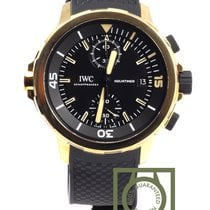 IWC Aquatimer Chronograph BRONZE Charles Darwin 379503 100% NEW