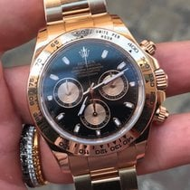 Rolex Daytona everose Oro rosa rose Gold full set