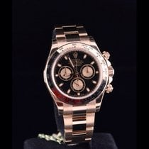 Rolex DAYTONA ROSE GOLD BLACK DIAL 2016