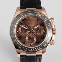 "Rolex Cosmograph Daytona ""Everose & Ceramic"""