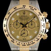 Rolex S/G Unworn O/P Champagne Dia Cosmograph Daytona B&P...