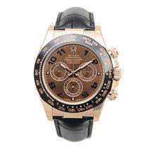 勞力士 (Rolex) Rose Gold Dark Brown Automatic 116515LNBR
