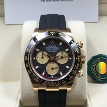Rolex 18K Yellow Gold Cosmograph Daytona Paul Newman Style [NEW]