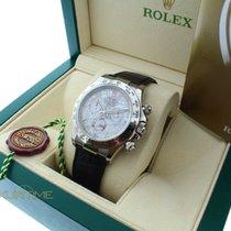Rolex Daytona 116519 Meteorite Roman Dial White Gold Case Leather