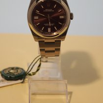 Rolex Oyster Perpetual 36 / Red Grape