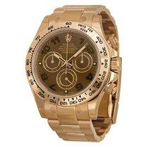 Rolex Watches: 116505 choc Daytona Everose Gold - Bracelet