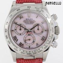 Rolex Daytona Whitegold MOP 116519