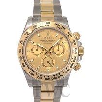 ロレックス (Rolex) Daytona Champagne/18k gold Ø40mm - 116503
