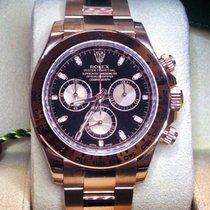 Rolex Daytona Gold Rose