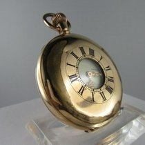 Waltham – 'bulls eye' pocket watch – around1900