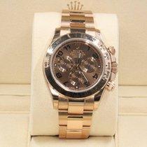 勞力士 (Rolex) Rose Gold Daytona Model 116505 Chocolate Dial...