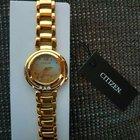 Citizen EM0325-55P