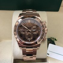 Rolex 18K Everose Pink Gold Cosmograph Daytona Chocolate Dial NEW