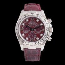 Rolex Daytona Ref. 116519 (RO3490)