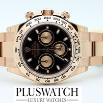 Rolex OYSTER PERPETUAL COSMOGRAPH DAYTONA EVEROSE 116505