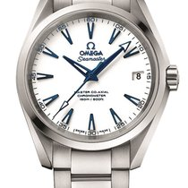 Omega 23190392104001 Seamaster Automatic Steel Men's Watch