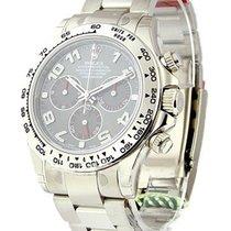 勞力士 (Rolex) Unworn 116509 White Gold Daytona on Bracelet...