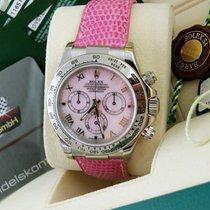 "Rolex Daytona BEACH ""Pink/ Rosa"" NEU/NOS B & P"