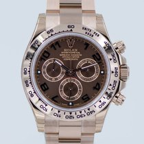 Rolex Daytona ref 116505 chocolate