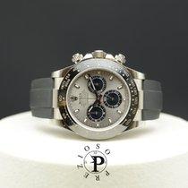 Rolex Daytona Or blanc 40mm Gris Sans chiffres