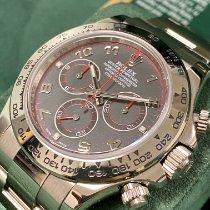 Rolex Daytona Oro blanco 40mm Rojo Árabes