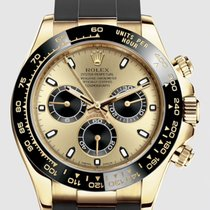Rolex Daytona Yellow gold 40mm Champagne No numerals United States of America, New Jersey, Totowa
