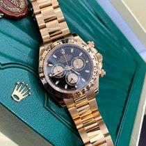 Rolex Daytona 116505-0008 usados
