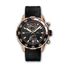 IWC Aquatimer Chronograph Rose gold 44mm Black No numerals
